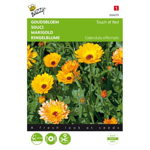 Buzzy® Calendula, Goudsbloem Touch of Red