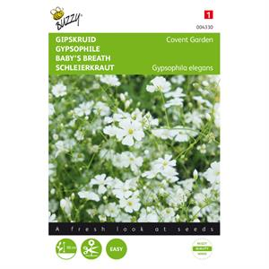 Buzzy® Gypsophila, Gipskruid Covent Garden