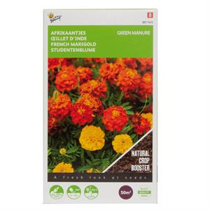 Buzzy® Groenbemester Tagetes 50 gram (8)