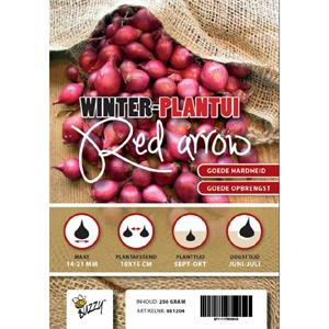 Showkaart Winter Plantuien Red Arrow 250 Gram